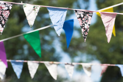 bunting hanging in the sun